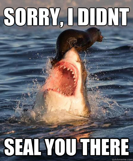 Sorry, i didnt Seal you there - Sorry, i didnt Seal you there  Misunderstood great white