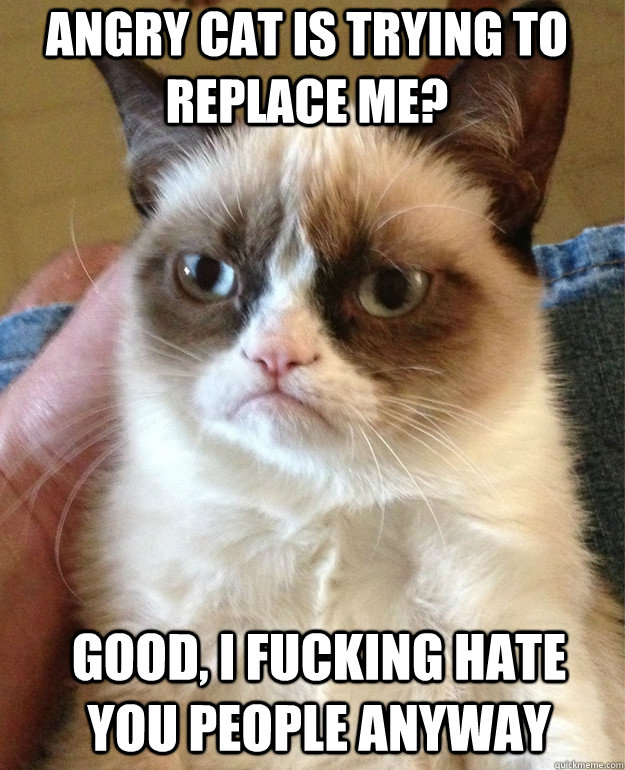 angry cat is trying to replace me? good, i fucking hate you people anyway - angry cat is trying to replace me? good, i fucking hate you people anyway  Grumpy Cat