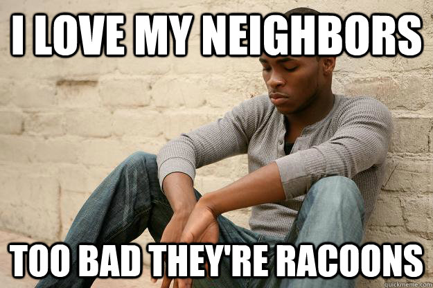 i love my neighbors too bad they're racoons