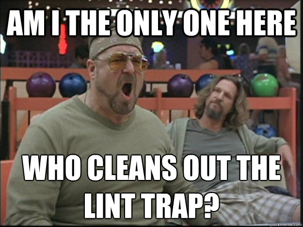am i the only one here who cleans out the lint trap?