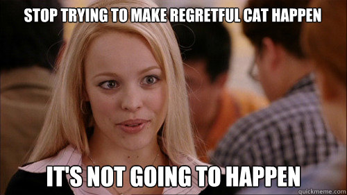 STOP TRYING TO MAKE REGRETFUL CAT HAPPEN IT'S NOT GOING TO HAPPEN - STOP TRYING TO MAKE REGRETFUL CAT HAPPEN IT'S NOT GOING TO HAPPEN  regina george