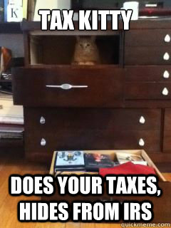 aa9f876bb497aa8480a2473d0cbab438b809d16d437cc8bcb1babeffbb505f15 tax kitty does your taxes, hides from irs tax kitty quickmeme