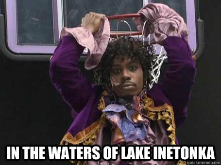 Purify Yourself In the waters of Lake inetonka