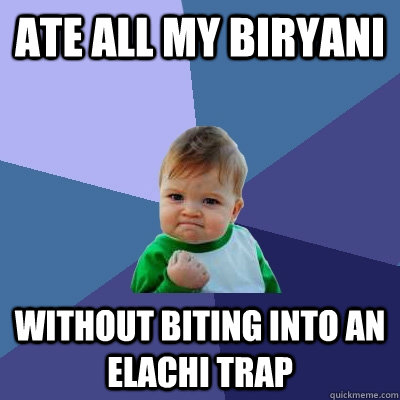 Ate all my biryani Without biting into an Elachi trap  Success Kid