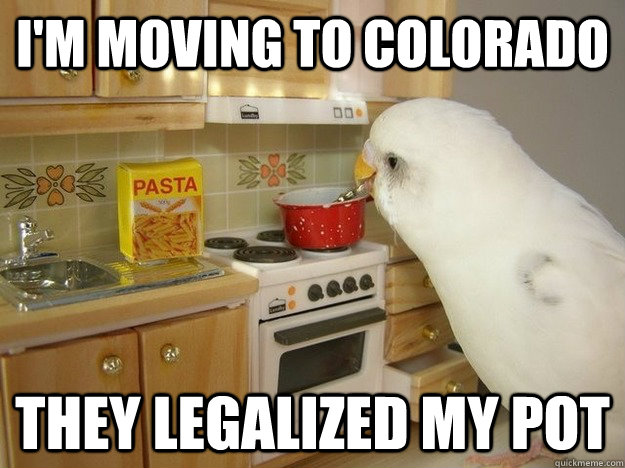 I'm moving to Colorado They legalized my pot - I'm moving to Colorado They legalized my pot  Misc