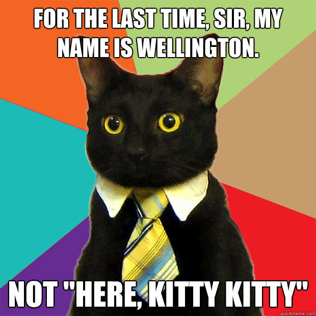 for the last time, sir, my name is Wellington. not