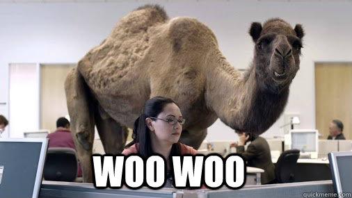 WOO WOO  hump day