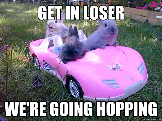 Get in loser we're going hopping - Get in loser we're going hopping  Mean Bunnies