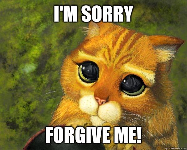 I'm sorry Forgive me!