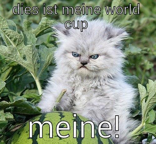 DIES IST MEINE WORLD CUP MEINE! German Kitty