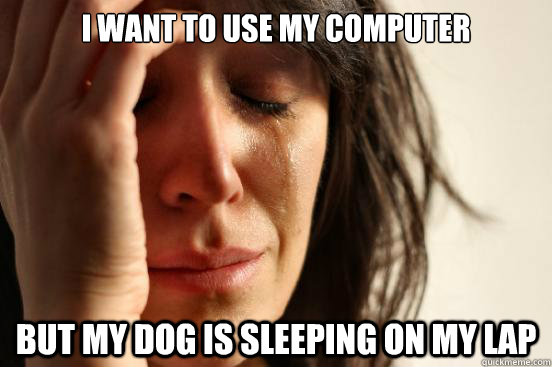 I want to use my computer but my dog is sleeping on my lap - I want to use my computer but my dog is sleeping on my lap  First World Problems