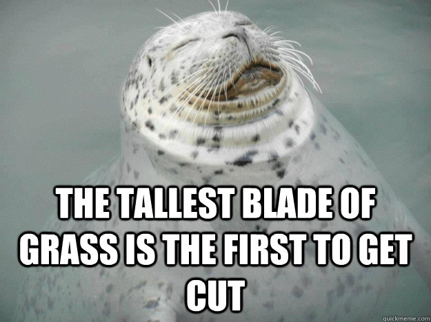 The Tallest Blade of Grass is the First To Get Cut - The Tallest Blade of Grass is the First To Get Cut  Zen Seal