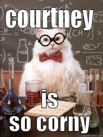 ab3cffcce658996fbaa20d2073724527b85a3eb08a0da72a5250e53bc5df502a corny courtney quickmeme,Courtney Memes