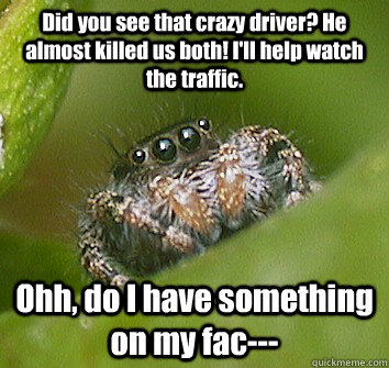 Did you see that crazy driver? He almost killed us both! I'll help watch the traffic. Ohh, do I have something on my fac--- - Did you see that crazy driver? He almost killed us both! I'll help watch the traffic. Ohh, do I have something on my fac---  Misunderstood Spider