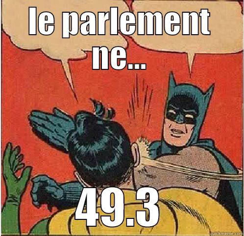 LE PARLEMENT NE... 49.3 Batman Slapping Robin