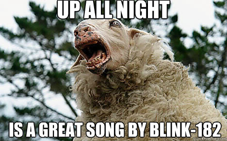 Up all night is a great song by blink-182