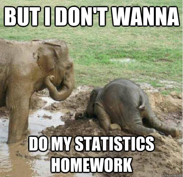 Do my statistics homework for me