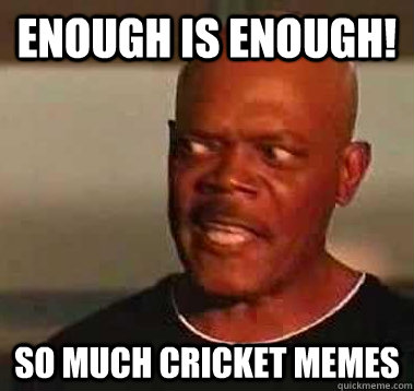 Enough is enough! SO much cricket memes