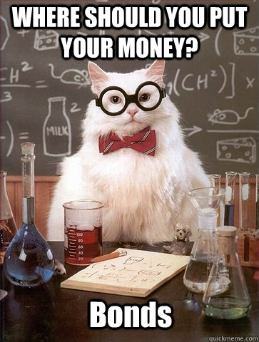 WHERE SHOULD YOU PUT YOUR MONEY? Bonds - WHERE SHOULD YOU PUT YOUR MONEY? Bonds  Chemistry Cat