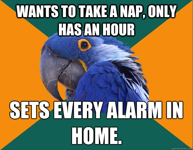 Wants to take a nap, only has an hour Sets every alarm in home. - Wants to take a nap, only has an hour Sets every alarm in home.  Paranoid parrot flat tire