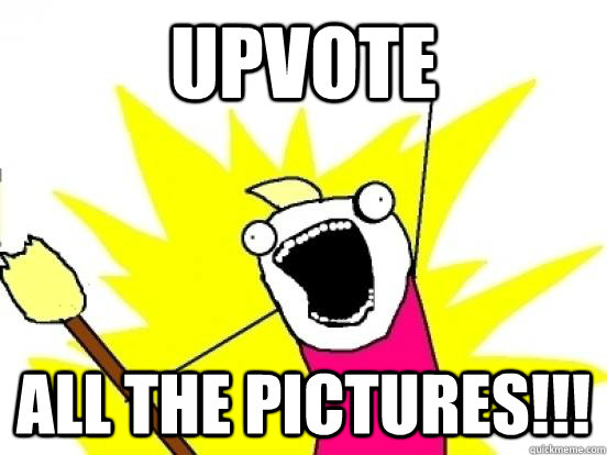 upvote ALL THE pictures!!!