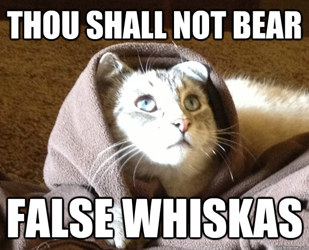 thou shall not bear false whiskas - thou shall not bear false whiskas  Kitty Jesus