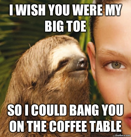 abab49622b4879ab667ef3cf78383cc183dbf8721a70f05c1c3589727cfa9337 i wish you were my big toe so i could bang you on the coffee table