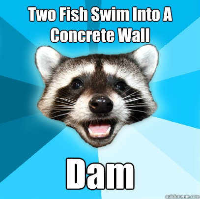 Two Fish Swim Into A Concrete Wall Dam  - Two Fish Swim Into A Concrete Wall Dam   Lame Pun Coon