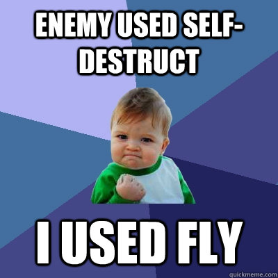 Enemy used self-destruct I used fly - Enemy used self-destruct I used fly  Success Kid