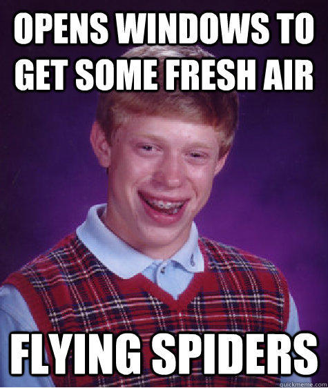 opens windows to get some fresh air flying spiders - opens windows to get some fresh air flying spiders  Bad Luck Brian