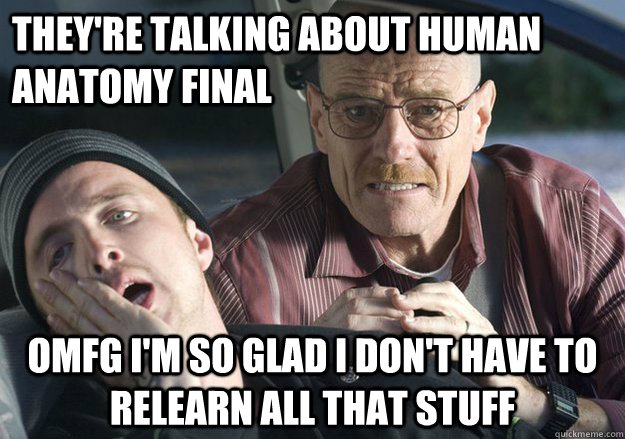 They're talking about human anatomy final OMFG I'm so glad I don't have to relearn all that stuff - They're talking about human anatomy final OMFG I'm so glad I don't have to relearn all that stuff  Get Over It