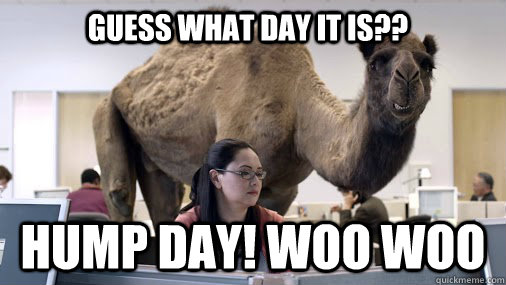 GUESS WHAT DAY IT IS?? HUMP DAY! WOO WOO  hump day