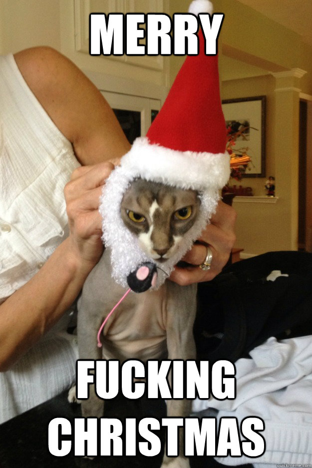 merry fucking christmas merry christmas - Funny Merry Christmas Meme
