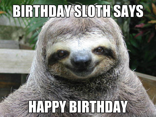 Happy birthday sloth meme - photo#2