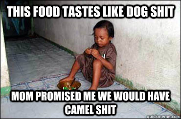 this food tastes like dog shit mom promised me we would have camel shit  Third World Problems