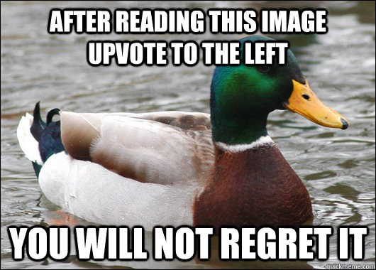 After reading this image upvote to the left You will not regret it - After reading this image upvote to the left You will not regret it  Actual Advice Mallard