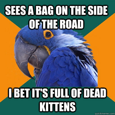 Sees a bag on the side of the road i bet It's full of dead kittens - Sees a bag on the side of the road i bet It's full of dead kittens  Paranoid Parrot