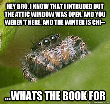 Hey bro, i know that i intruded but the attic window was open, and you weren't here, and the winter is chi-- ...whats the book for - Hey bro, i know that i intruded but the attic window was open, and you weren't here, and the winter is chi-- ...whats the book for  Misunderstood Spider