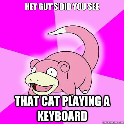 Hey guy's Did you see that cat playing a keyboard - Hey guy's Did you see that cat playing a keyboard  Slowpoke