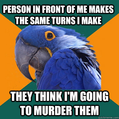 Person in front of me makes the same turns I make They think I'm going to murder them - Person in front of me makes the same turns I make They think I'm going to murder them  Paranoid Parrot