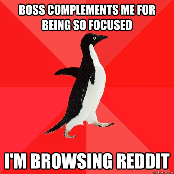 Boss complements me for being so focused I'm browsing reddit - Boss complements me for being so focused I'm browsing reddit  Socially Awesome Penguin