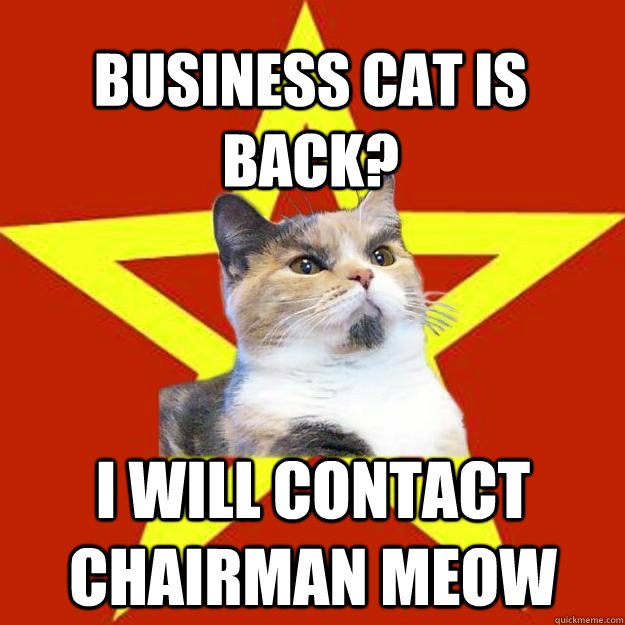 Business Cat is back? I will contact chairman meow  Lenin Cat