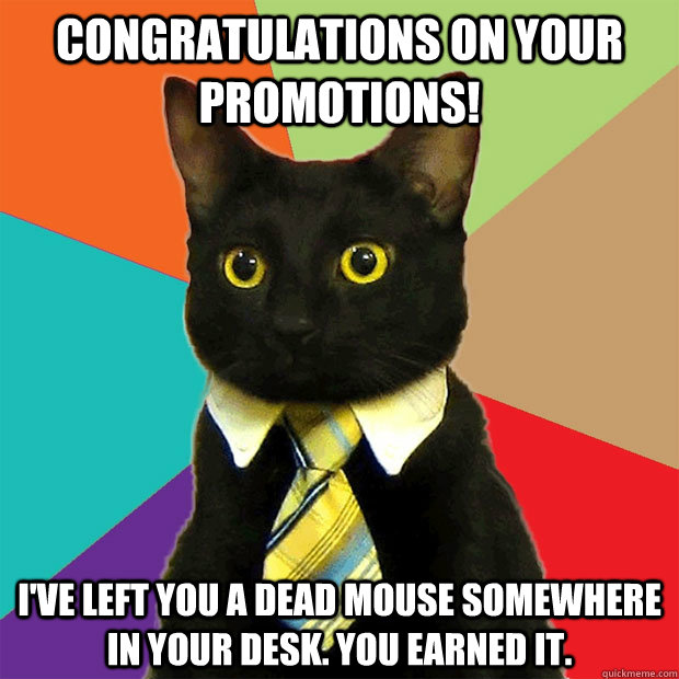 congratulations on your promotions i ve left you a dead mouse