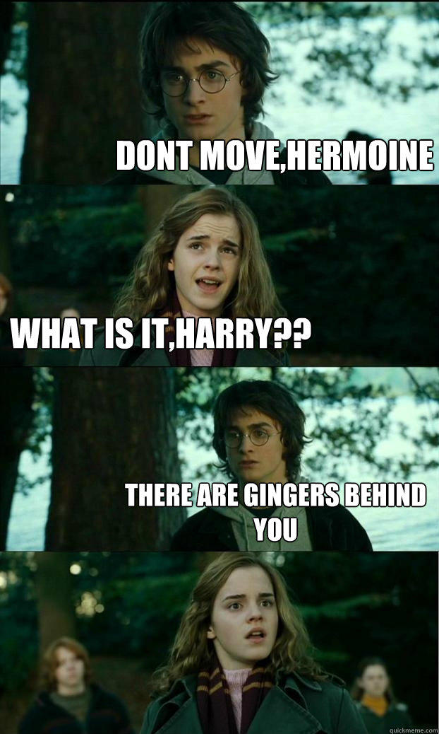 dont move,hermoine what is it,harry?? there are gingers behind you  Horny Harry