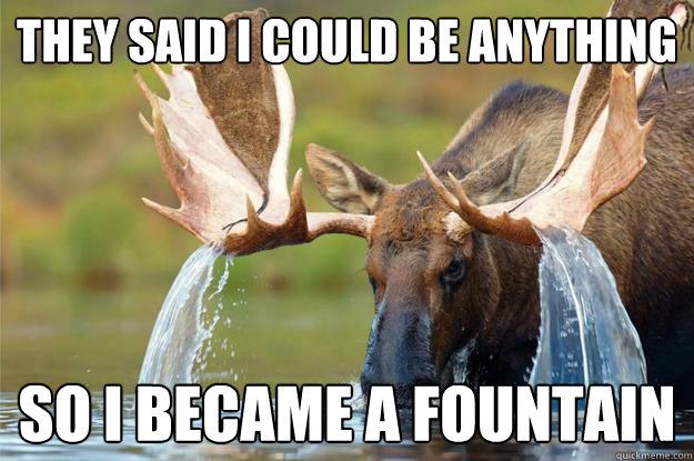 ac407cc0774eb1e4de8ac1df2be312e0d4f43f8c7eb208e643cdd16e6ad3fec6 moose fountain memes quickmeme