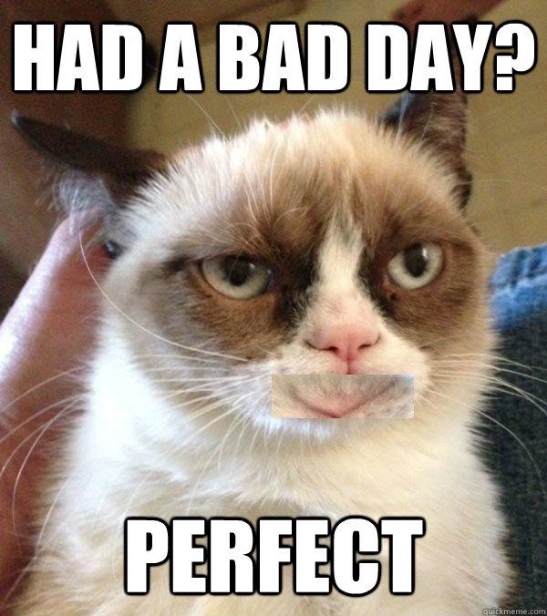 happy cat memes - photo #8