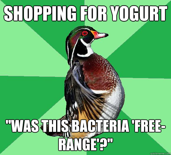 Shopping for Yogurt