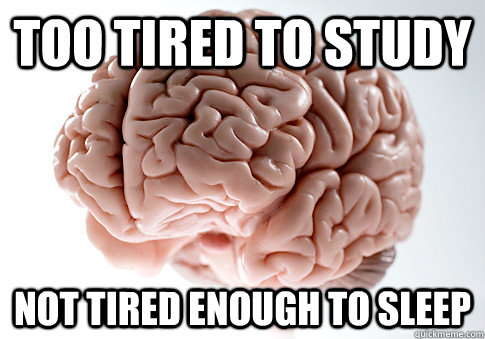 TOO TIRED TO STUDY NOT TIRED ENOUGH TO SLEEP - TOO TIRED TO STUDY NOT TIRED ENOUGH TO SLEEP  Scumbag Brain