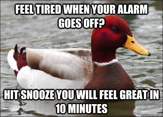 feel tired when your alarm goes off? hit snooze you will feel great in 10 minutes - feel tired when your alarm goes off? hit snooze you will feel great in 10 minutes  Malicious Advice Mallard