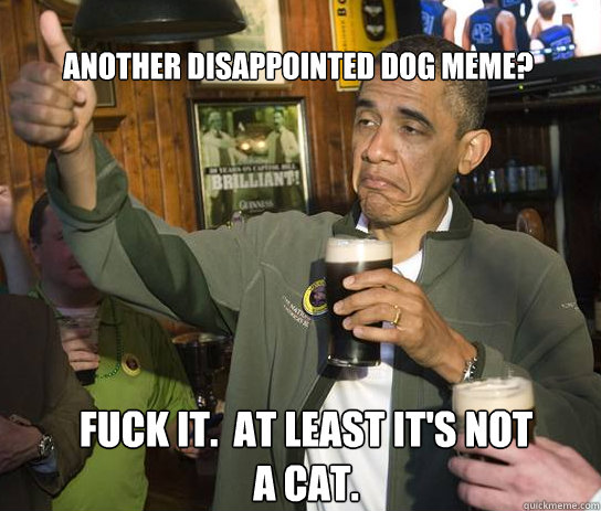 Another disappointed dog meme? Fuck it.  at least it's not a cat. - Another disappointed dog meme? Fuck it.  at least it's not a cat.  Upvoting Obama